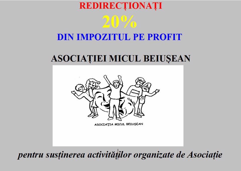 Redirectionati 20% din impozitul pe profit